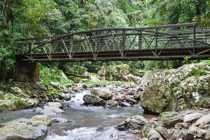 Bridge-over-Cave-Creek1.jpg