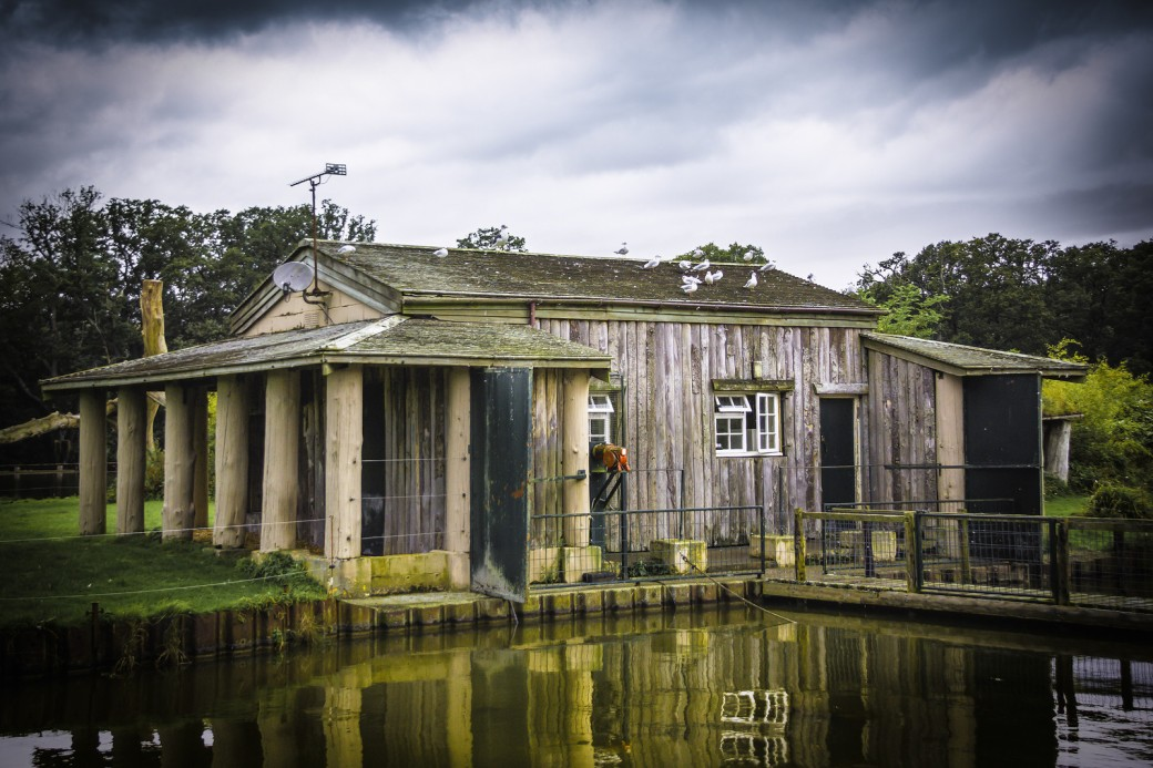 weathered-shed-X3.jpg